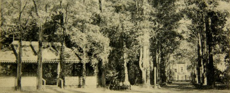 Фото 1. Ск. сад до 1918 г.